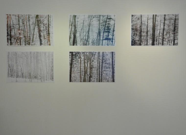 serie van Linda Mosterd
